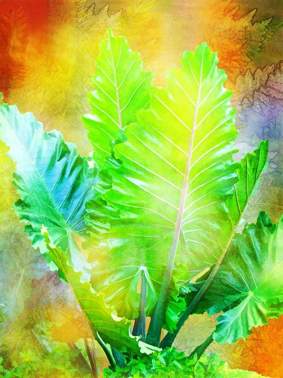 Golden Leaves Tropical Fine Art Print Various Sizes