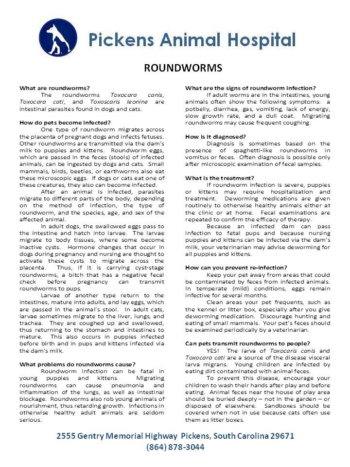 Roundworms Roundworm Intestinal Parasites Parasite