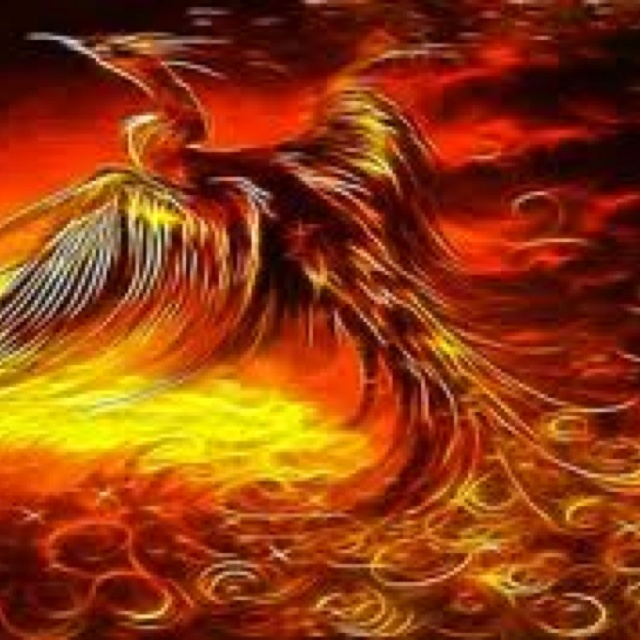 a firebirds nest essay I have had lots of requests for examples of visual text essays and i will put a few more up this one is on a film we haven't studied but it is on a question that some of you have attempted.