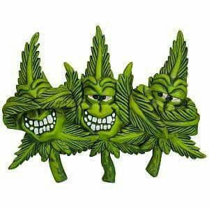 Buy Marijuana Online | Order Weed Online |Buy cannabis online| THC and CBD Oil For Sale. Buy Marijuana Online, Buy Medical Marijuana Online, Buy Weed Online, Buy Cannabis Oil Online , THC, CBD Oil, hash,wax,shatter for sale,medical marijuana,cannabis,weed oil,THC,CBD,Concentrate .contact info Go to..https://www.jointcannabisdispensary.com Text or call +1(408)909-1859.