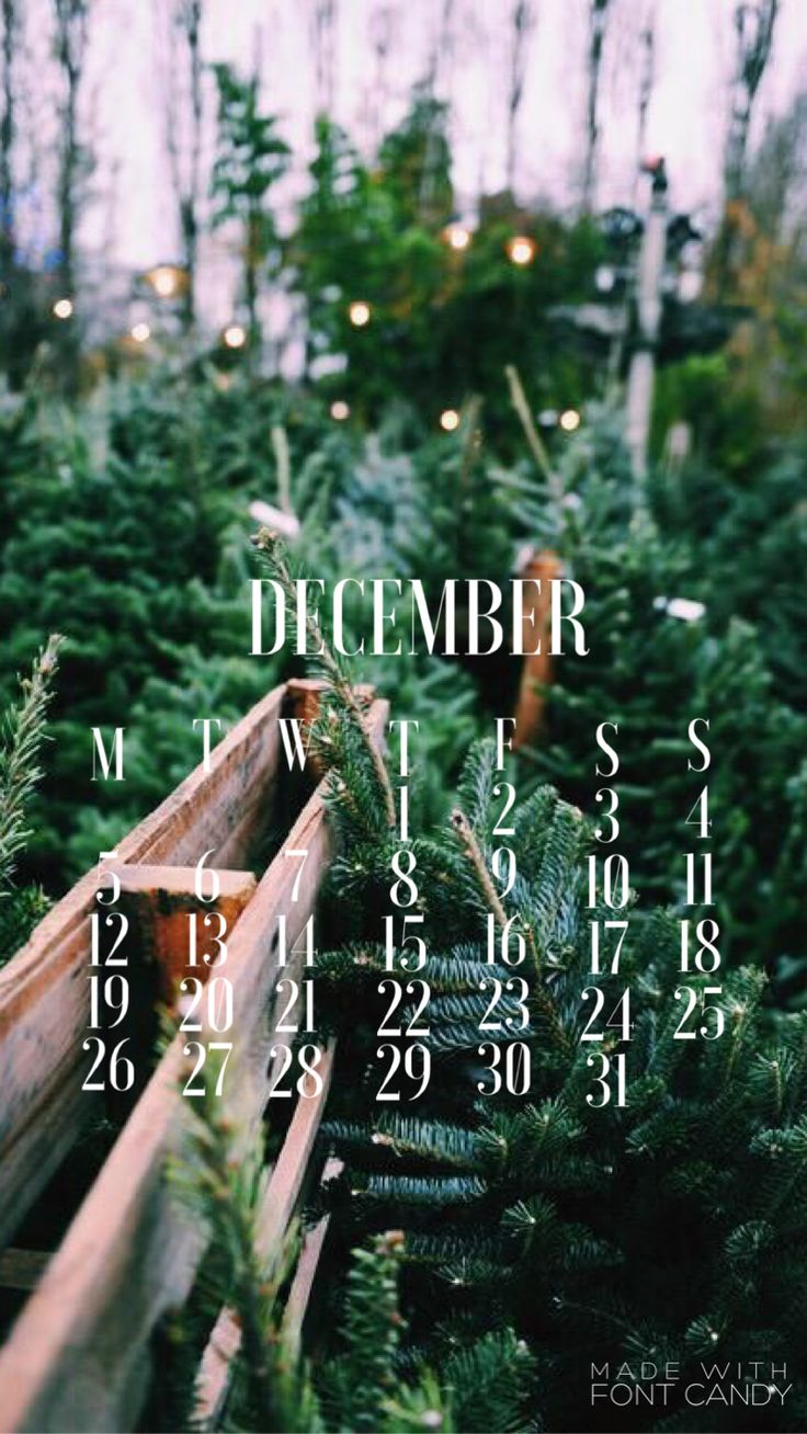 DECEMBER 2016 CALENDAR IPHONE WALLPAPER (own image)