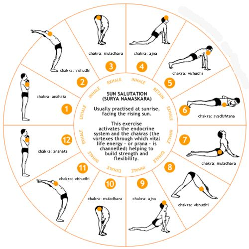 Simple Yoga Routine for Beginners | common morning Yoga routine is the Sun Salutation show step by step ...