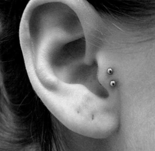 Double tragus piercing.. Get this weekend during tattoo therapy?!?!