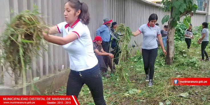II JORNADA DE ACCIÓN CÍVICA REALIZARON TRABAJADORES DE LA MUNICIPALIDAD DISTRITAL DE MARANURA EN BALNEARIO DE CHINCHE, PARA PROXIMA APERTURA | Municipalidad Distrital de Maranura