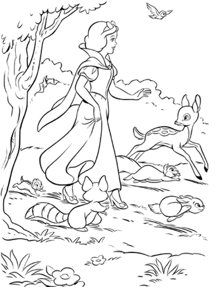 Snow White And Woodland Animals