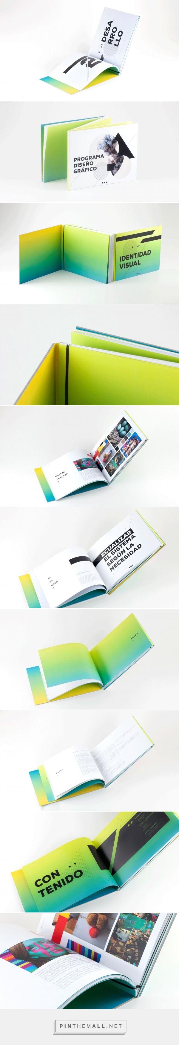 brand book design / identity branding / diseño / color / Design guidelines / visual identity