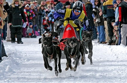 Cannington dogsled races in January