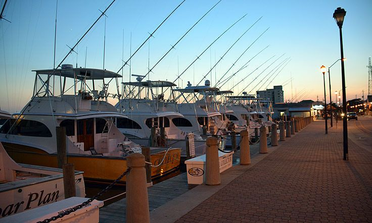 1000 images about morehead city nc on pinterest for Fishing morehead city nc