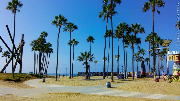 2016, week 47. Venice Beach - CA (U.S.A.).  Picture taken: 2016, 09