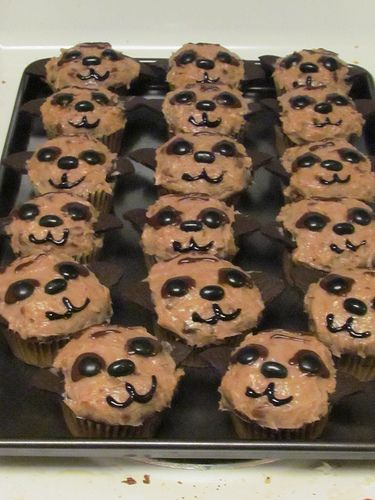Meerkat Cupcakes