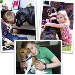 Read about The Association of Pet Behaviour Counsellors (APBC) supporting our PAWS service. paws.dogsforthedisabled.org