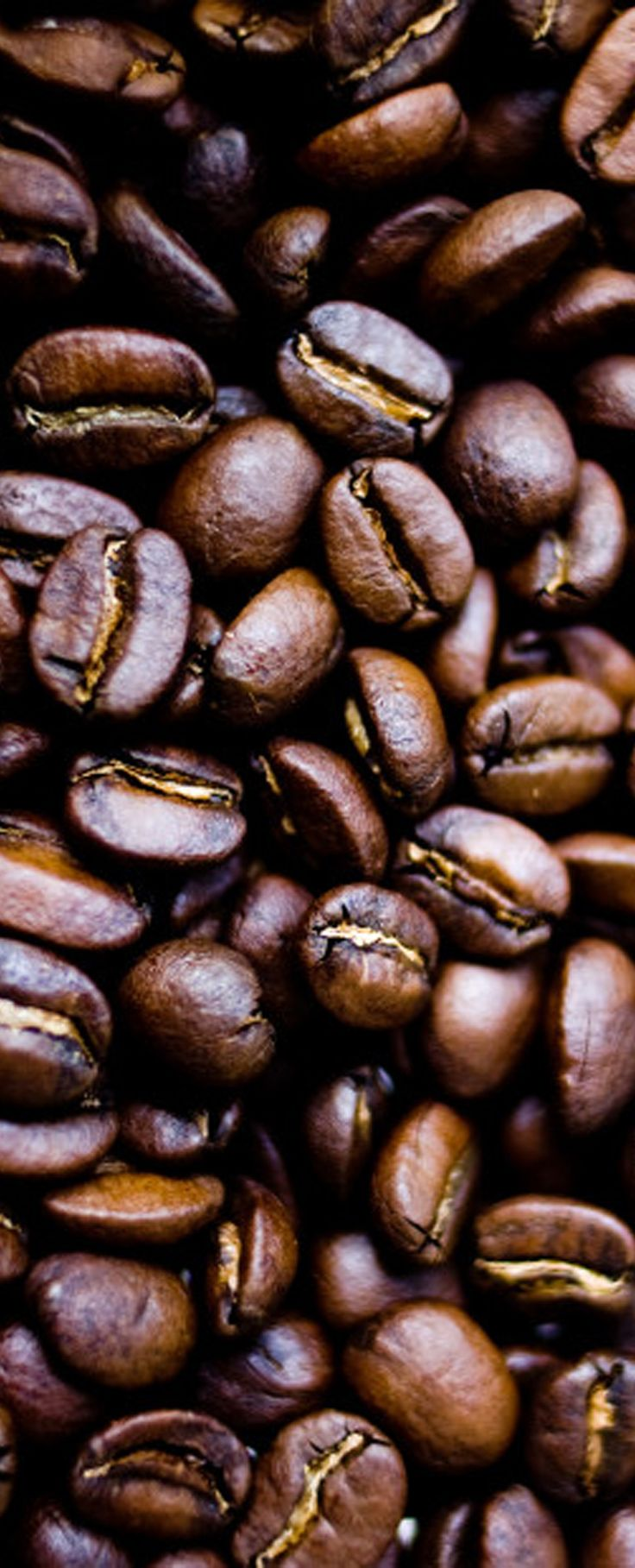 If You Care About Your Coffee, Then You Should Know How to Store It. Know how long your coffee beans will keep, whether you should ever consider freezing them, and what you should do with them once they go stale.