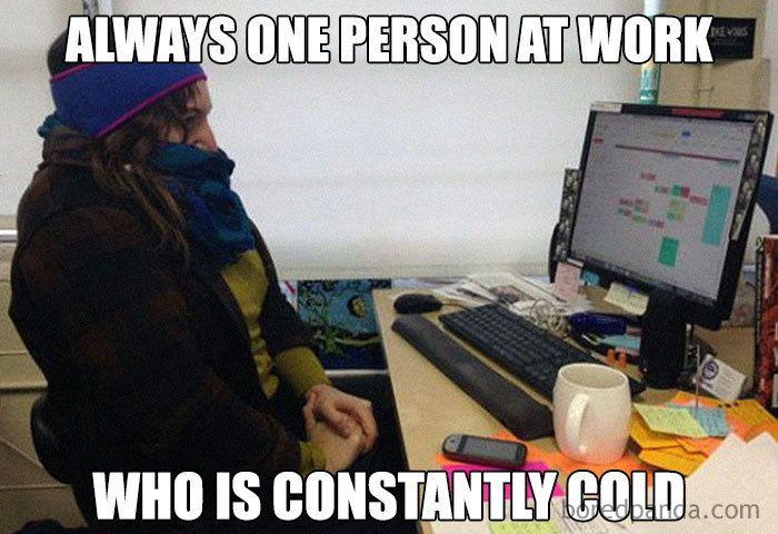 Cold Office Meme Work Jokes Work Humor Work Memes