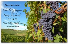Wine Save the Date Magnets - Vineyard Grapes. Wine Save the Date Magnets - Vineyard Grapes. Blueish purple grapes are the highlight while the countryside vineyard is set in the background. The Vineyard Grapes Save the Date Magnets will set the tone for your wine country nuptials.  http://www.magnetqueen.com/wine_vineyard_grapes_order.htm#
