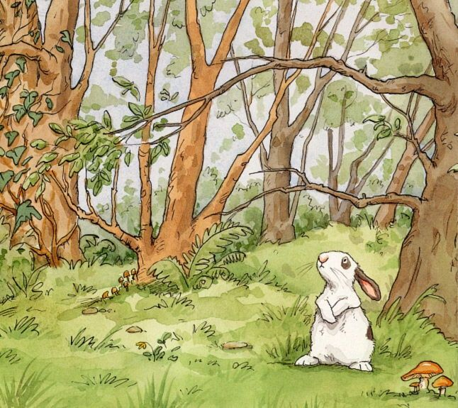 Thoughtful bunny in the woods . . . .
