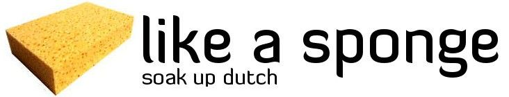 Soak up Dutch it states... a place for those who are finding it a bit messy learning Dutch or for those who may have given up!