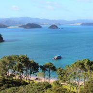 Unterwegs an Neuseelands Nordküste