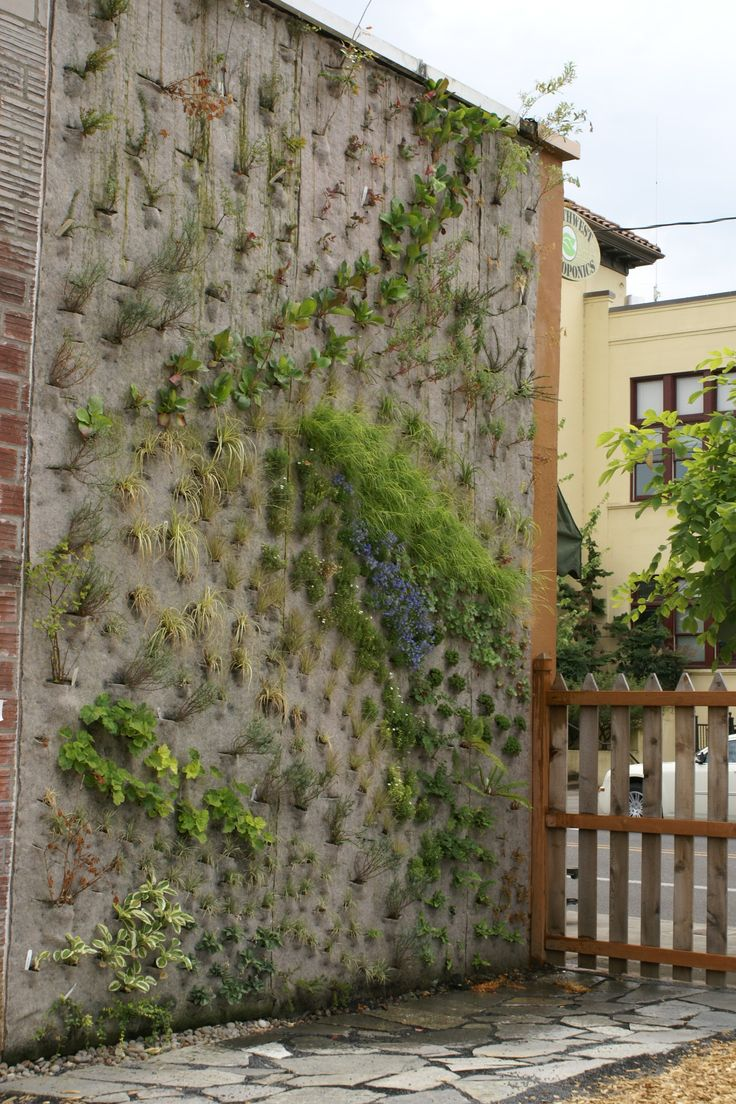Urban wall gardening - Find This Pin And More On Vertical Gardens And Greenroofs Around The World