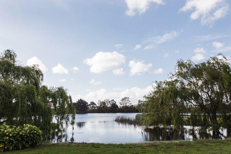 The Lake..... www.stillwateratcrittenden.com.au