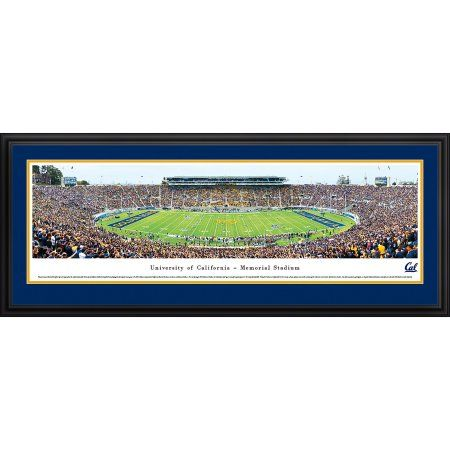 California Golden Bears Football - 50 Yard Line - Blakeway Panoramas Ncaa College Print with Deluxe Frame and Double Mat