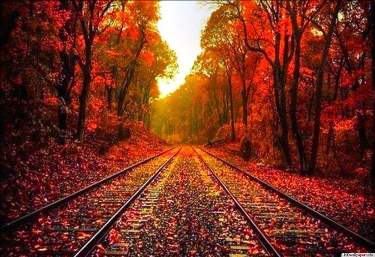 Beautiful Autumn Desktop Wallpaper - http://hdwallpaper.info/beautiful-autumn-desktop-wallpaper/  HD Wallpapers