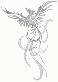 A Phoenix rising from the ashes sketch | Body Art ...