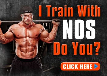 A Muscle Building Program Different Than Any Other
