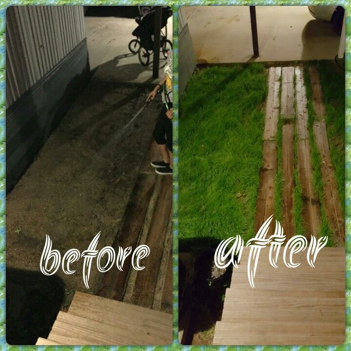 From sand to grass in 3 weeks!! All you need is Scott's grass seed, a rake and some water.