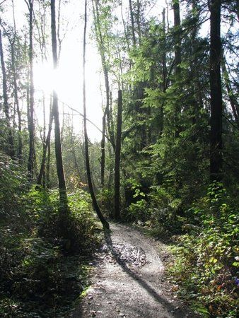 book your tickets online for pacific spirit regional park vancouver see 205 reviews
