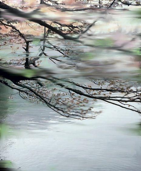 Blossoms over gushing water, by Sandra Kantanen for 'Fantom' magazine