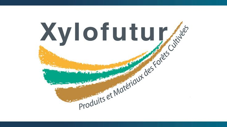 Xylofutur, 1er pôle de compétitivité à utiliser l'EFQM - Retours d'expériences dans la filière bois, papier et carton