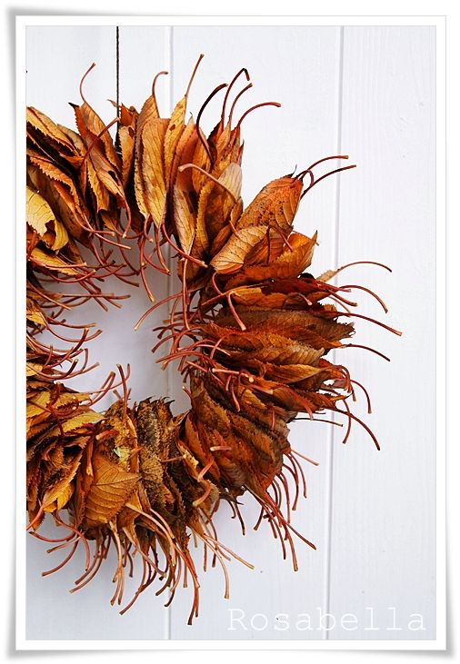 Easy leave wreath- I didn't see instructions but looks easy enough if you used leaves you preserved. I think you'd just simply run thin wire through them.