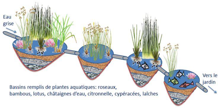30 best jardin images on Pinterest Garden, Gardening and Hydroponics - utilisation eau de pluie maison