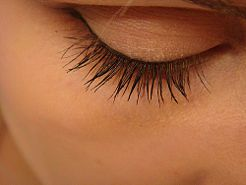 How to Grow Back Your Eyelashes After They Fall Out