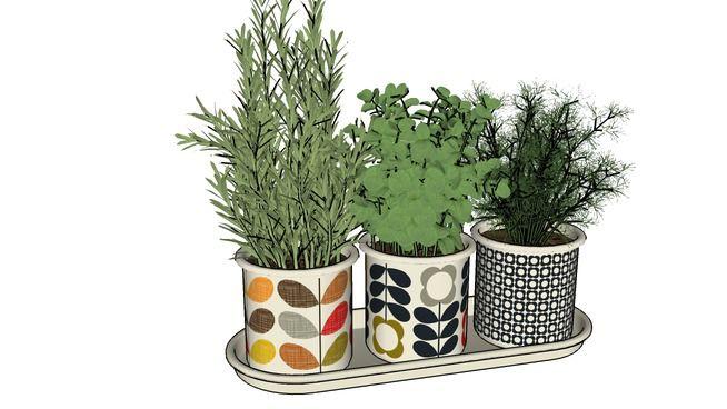 Large preview of 3D Model of Decoração :: Plantas com Vasos coloridos