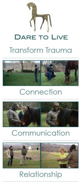 Dare to Live – Equine Facilitated Therapy  Transform Trauma to True Potential