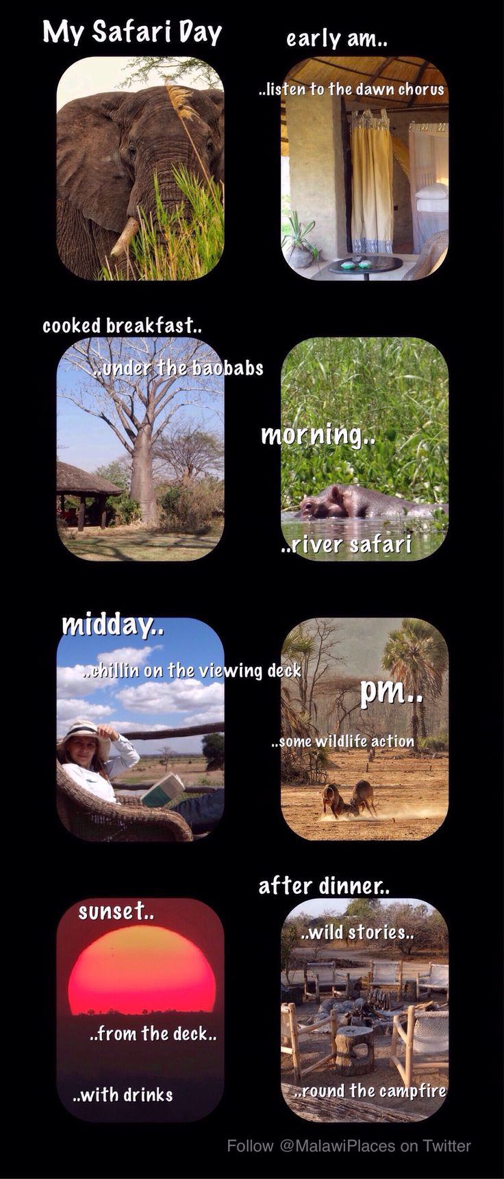 A blog post on how to organise you days at Bushmans Baobabs to maximise your enjoyment depending upon your priorities. #BushmansBaobabs #Liwonde National Park #Malawi #Wildlife