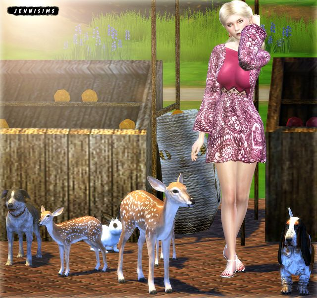 sims 4 how to know if a pet is pregnant