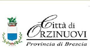 """Nomina del revisore dei conti della """"Fondazione Educativa Scuola Materna Giuseppe Garibaldi"""" di Orzinuovi"""