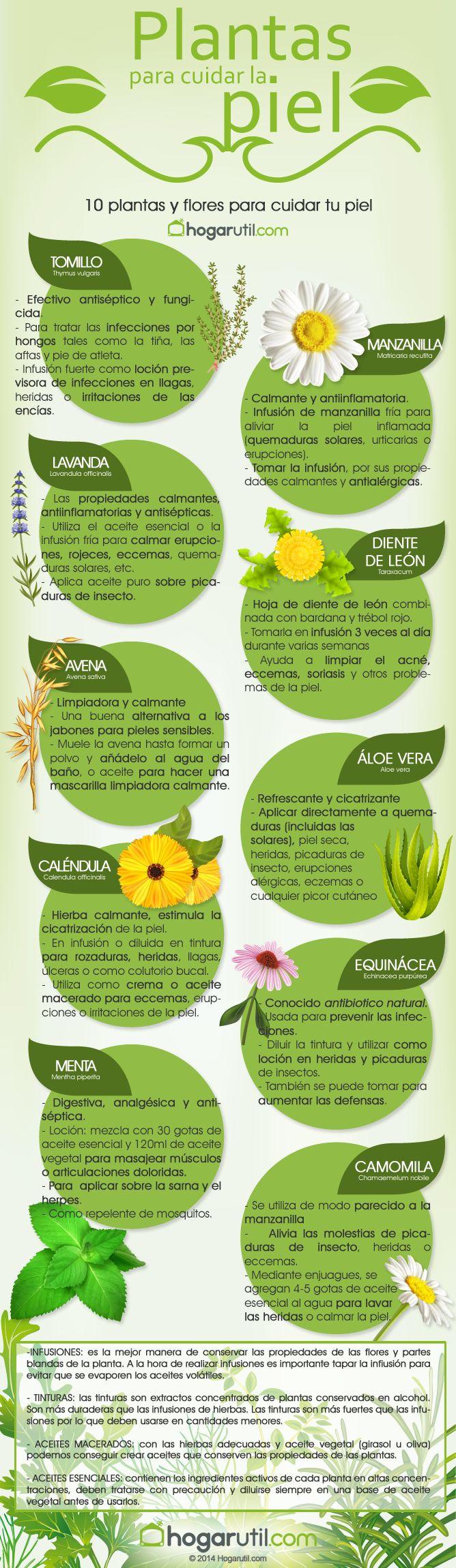 Infografía: plantas para cuidar la piel #vidasana #alimentos #salud #piel