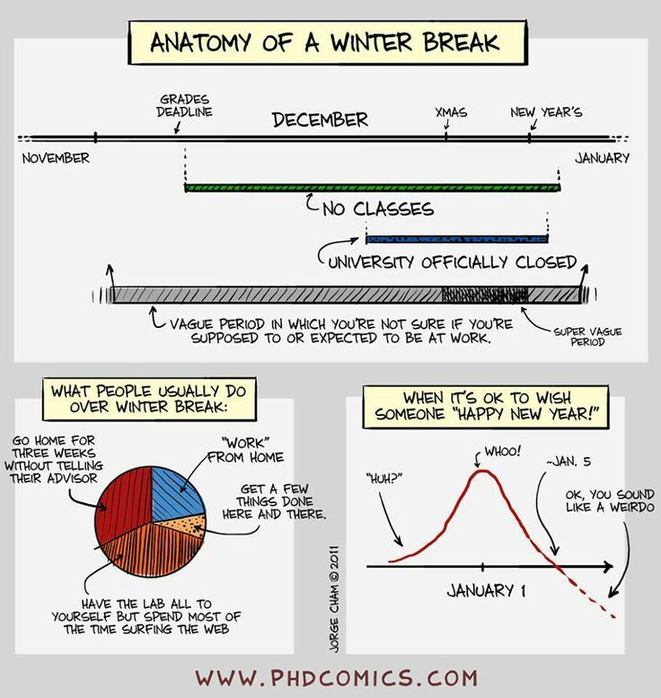 16 best Grad student life images on Pinterest | Phd comics, Student ...