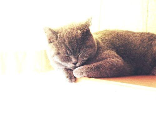 sweety little one…