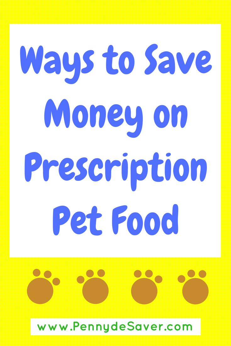 Ways to Save Money on Prescription Cat Food and Prescription Dog Food