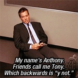 "My name's Anthony. Friends call me Tony. Which backwards is ""y not"". - Tony Dinozzo // NCIS"