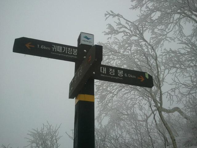 Seoraksan National Park, Sokcho, Korea: Seoraksan in winter is a white wonderland with snow.