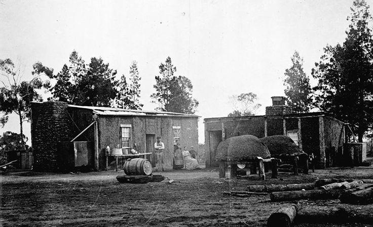 Mud brick houses and baker's ovens, near Jeparit c1905.