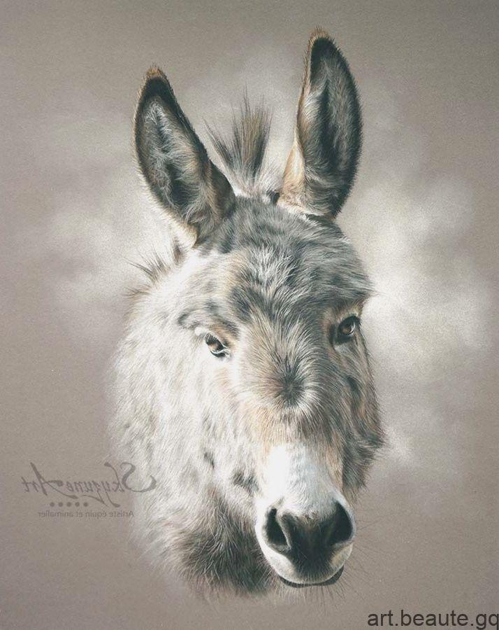 Portrait Animalier Realise Aux Pastels Secs D Un Petit Ane Ane Dessin Art Animalier Peinture Renard