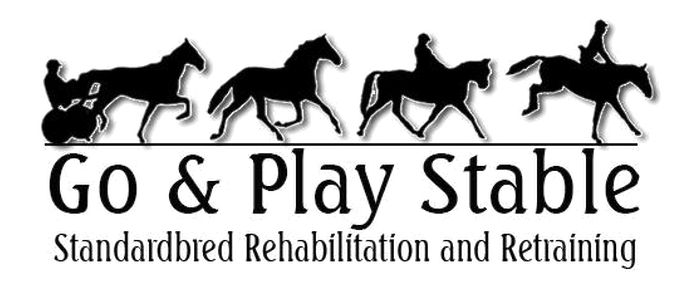 Go and Play Stable | Available Horses