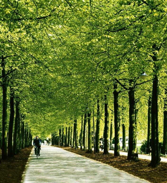 Münster, Germany.... biked the promenade many, many times! Ein wunderschöner Radweg rund um die Innenstadt!