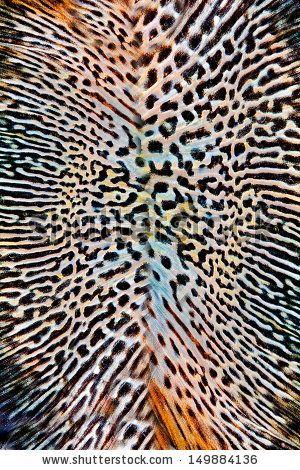 Seamless Animal skin pattern   - stock photo